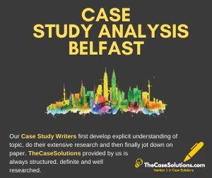 Case Study Analysis Belfast
