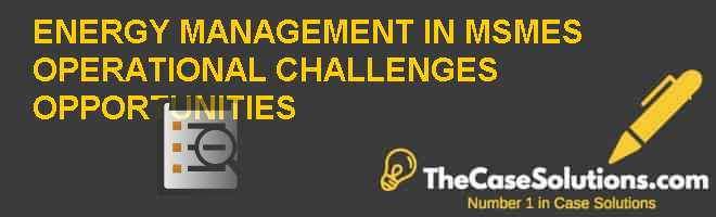 ENERGY MANAGEMENT IN MSMES: OPERATIONAL CHALLENGES & OPPORTUNITIES Case Solution