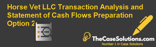Horse Vet LLC: Transaction Analysis and Statement of Cash Flows Preparation  Option 2 Case Solution