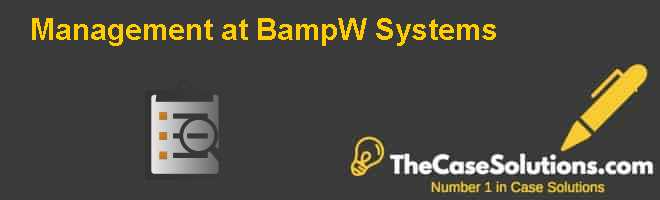 Management at B&W Systems Case Solution
