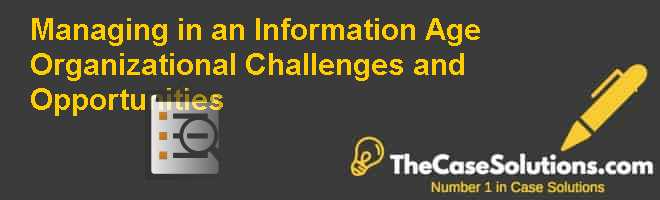 Managing in an Information Age: Organizational Challenges and Opportunities Case Solution