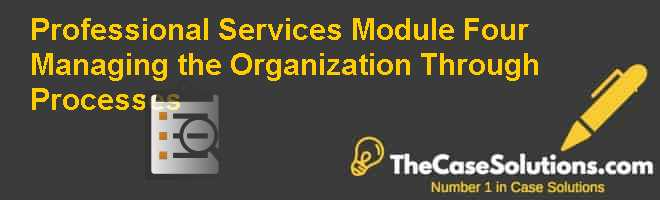Professional Services Module Four: Managing the Organization Through Processes Case Solution