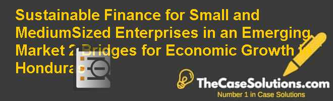 Sustainable Finance for Small and Medium-Sized Enterprises in an Emerging Market (2 Bridges for Economic Growth in Honduras) Case Solution