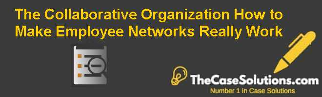 The Collaborative Organization: How to Make Employee Networks Really Work Case Solution